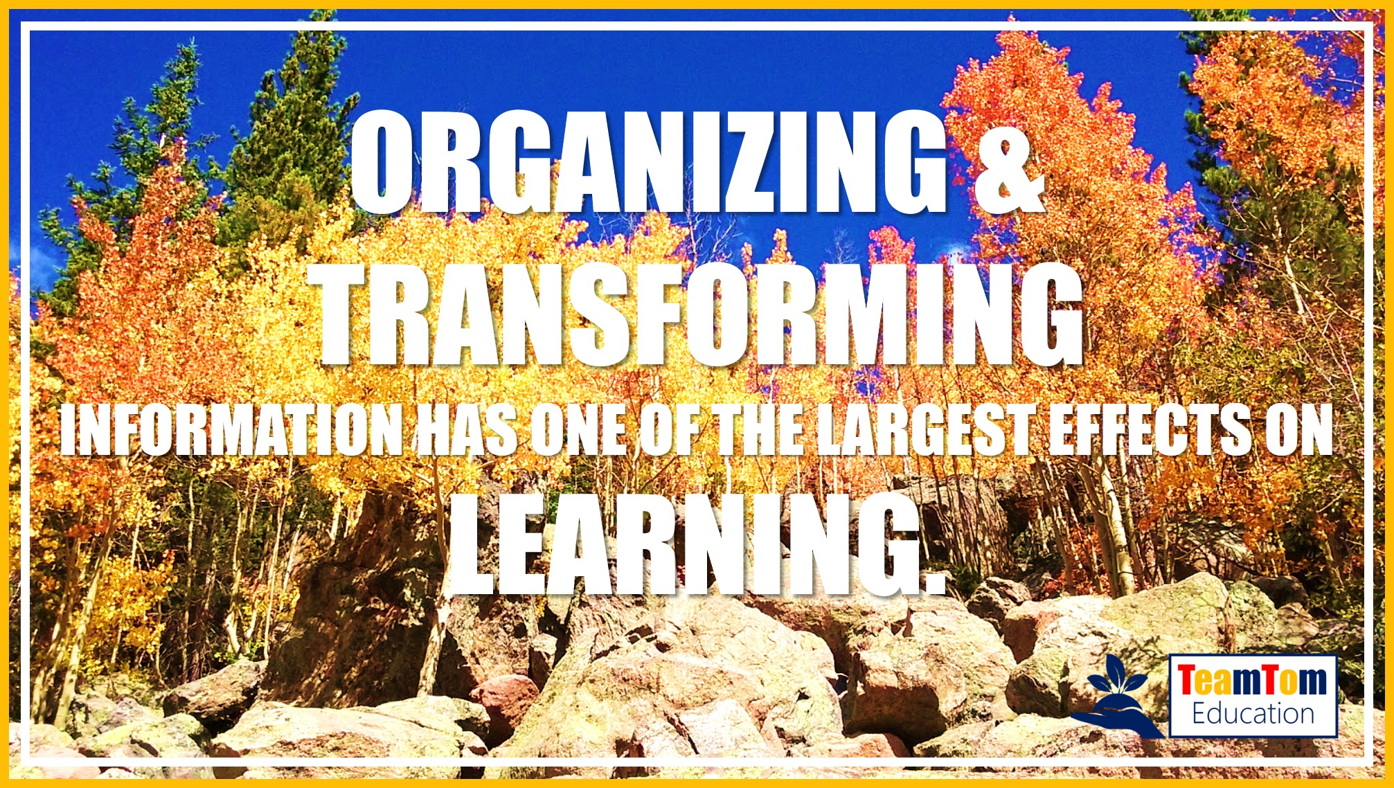 John Hattie's research showed high amounts of learning come from organizing thoughts.